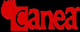 CANEA Wzorcownia 2021